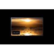 OLED Телевизор Sony KD-55A1